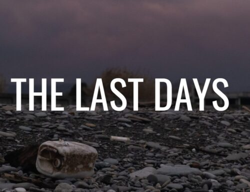 In The Last Days …
